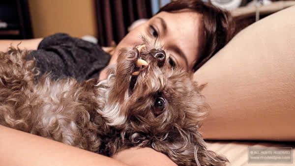 care for blind dog