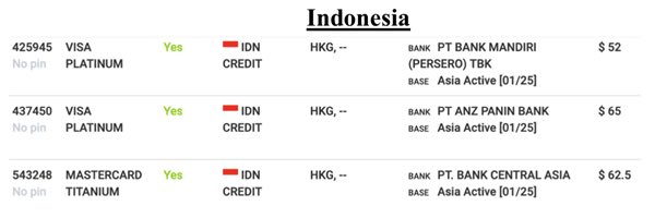 indonesia payment card details exposed