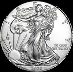 american silver eagles on eBay